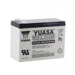 Аккумулятор YUASA REC10-12